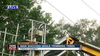 Man trimming trees shocked in Spring Hill