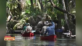 3rd Annual Florida Birding and Nature Festival
