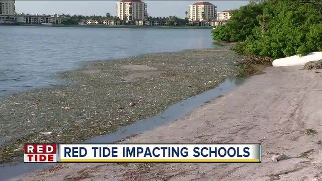 Some Pinellas County residents say red tide is making them sick