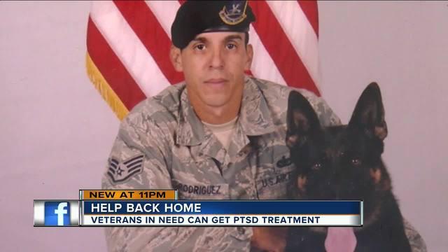 Military veteran arrested at Tampa airport receiving ...