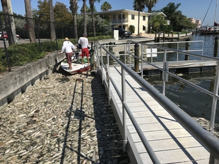 Contractor sends big bill for red tide cleanup