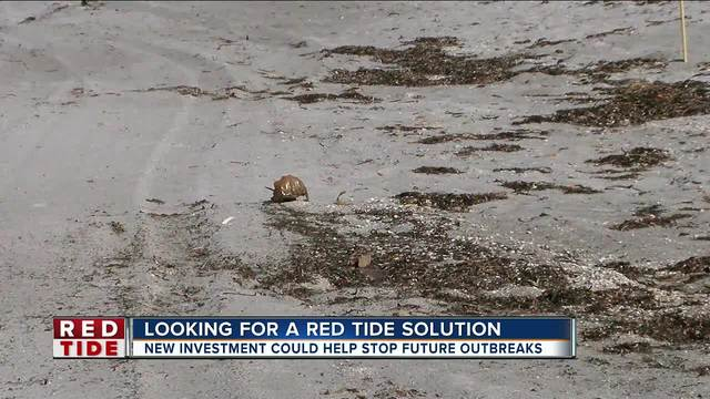 Governor Scott allocates -2-2 million to expand Mote Marine red tide…