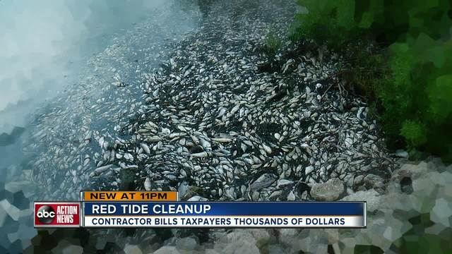 I-Team- Taxpayers billed -16-000 a day by contractor to clean up dead…