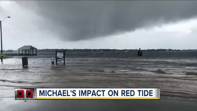 Hurricane Michael-s impact on red tide