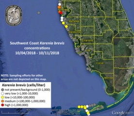 Red tide reduced in Manatee, Sarasota counties