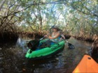 Kayak through mangrove tunnels in St. Pete