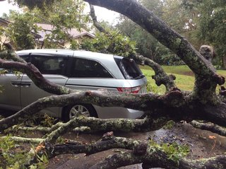 PHOTOS | Damages following severe weather