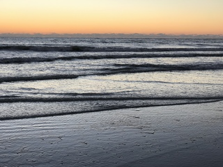 Can red tide survive winter?